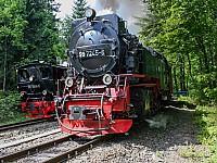 Botschafterin des Harzes - die Harzer Schmalspurbahnen verbinden zwei Bundesländer und romantische Harzorte miteinander