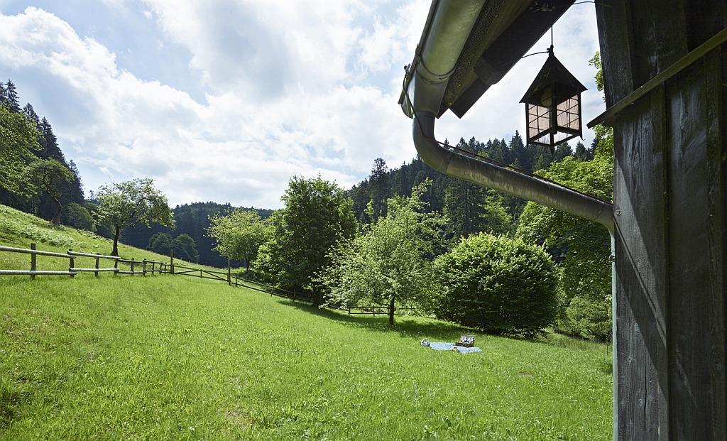 Am Tag den Schwarzwald erkunden