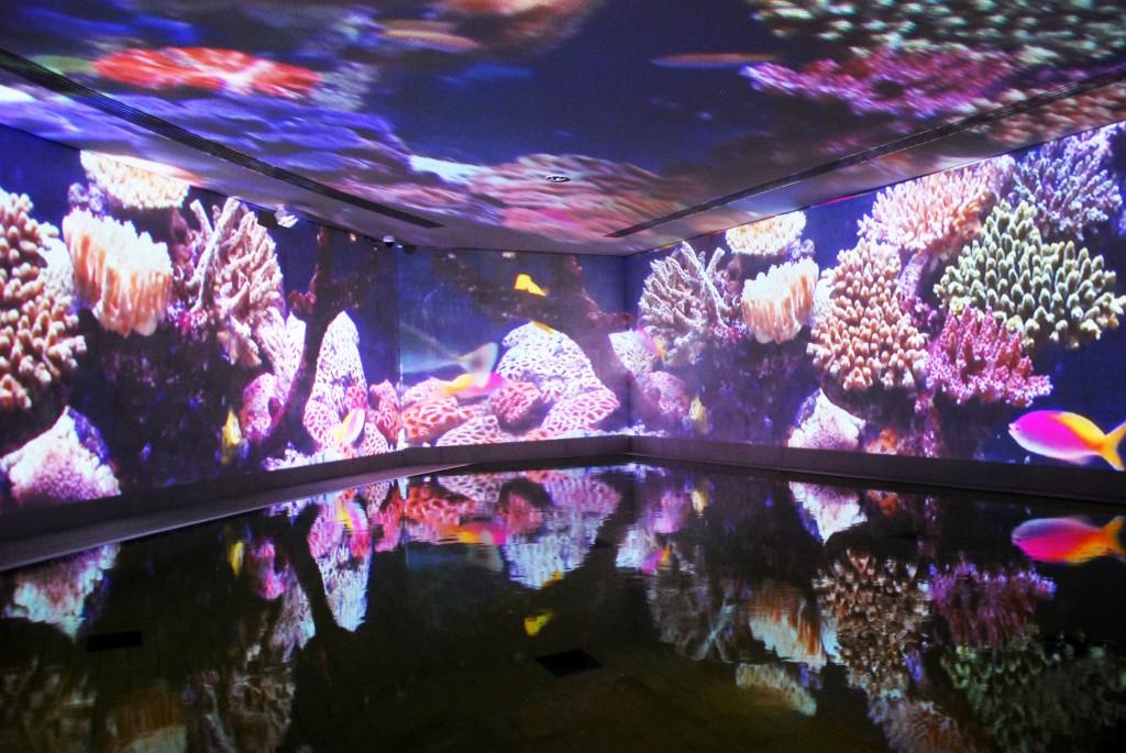 Das Licht-und Klangbad gehört zu einem von drei Solebecken der Therme in Bad Elster
